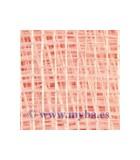 TEJIDO SINAMAY 90 CM ANCHO x 50 CM COLORES : COLORES TOCADOS:Pink Rose