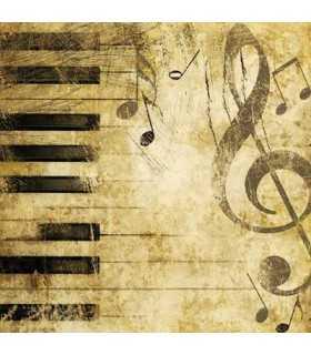 SERVILLETAS AMBIENTE 33x33cm 20 UD PIANO
