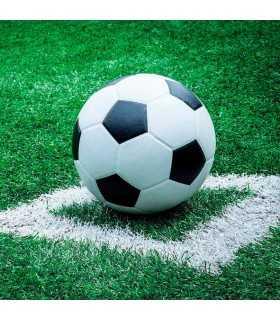 SERVILLETAS AMBIENTE 20 UD FÚTBOL FOOTBALL