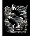 KIT RASCADO PLATEADO ORCAS 25 x 20 CM