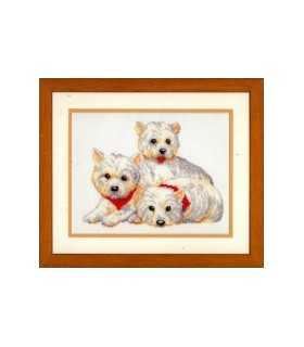KIT VERVACO TRES WHEST HIGHLAND WHITE TERRIER.